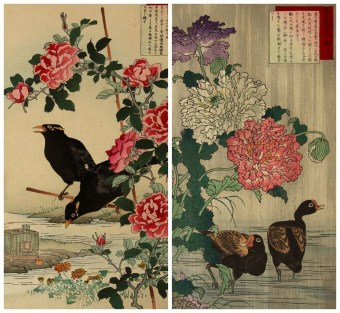 Meiji Deutschland, Woodblock Print Animals and Plants, Meiji Switzerland, Meiji Nederlands,Meiji Online Shop