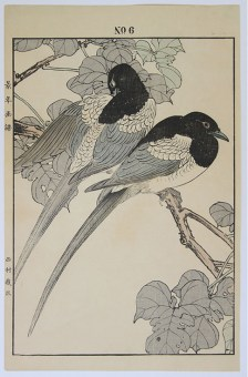Imao KEINEN Two Magpies on a Mulberry Branch
