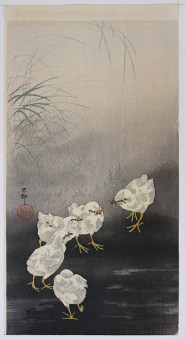 Ohara KOSON Chicks fighting over a worm
