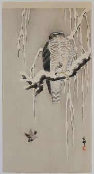 Woodblock Print - Ohara KOSON - Goshawk and Sparrows