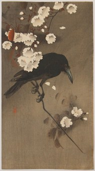 Ohara KOSON Crow on Cherry Branch