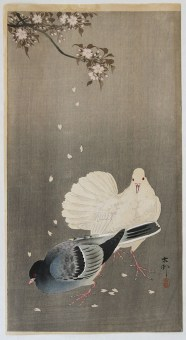 Ohara KOSON Two Pigeons sitting between falling Cherry Blossoms