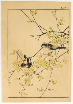 KEINEN_Tailed_Tit_Japanese_Woodblock_print_D207_web