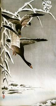 Koson_Flying_geese_B025b_web